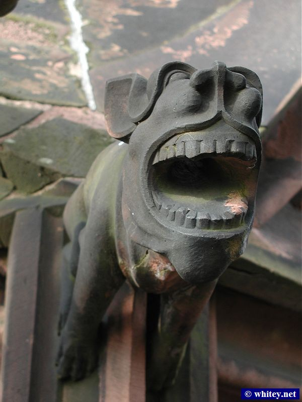 One of Basel Münster's Gargoyles, Basel, Switzerland.