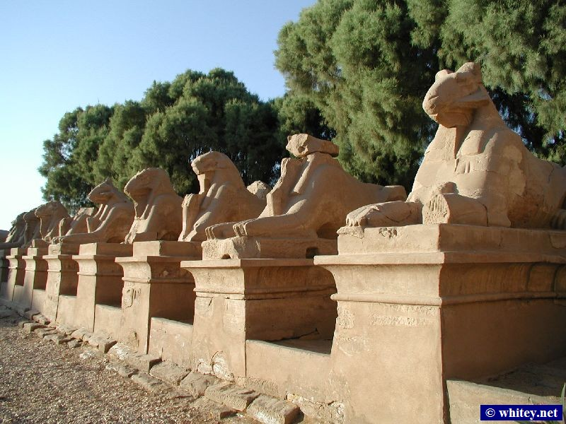 The avenue of sphinxes at the entrance to the カルナック神殿, エジプト.