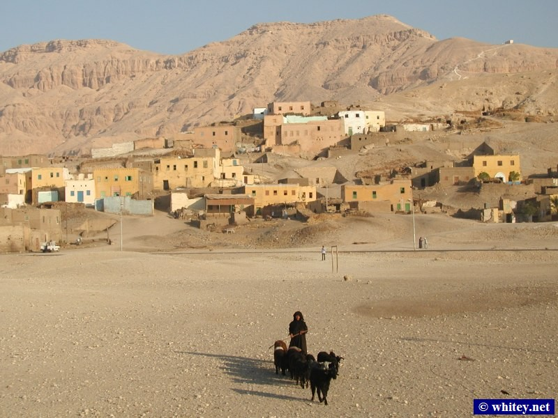 Village and Shepherd, Near the 왕가의 계곡, Central 이집트.