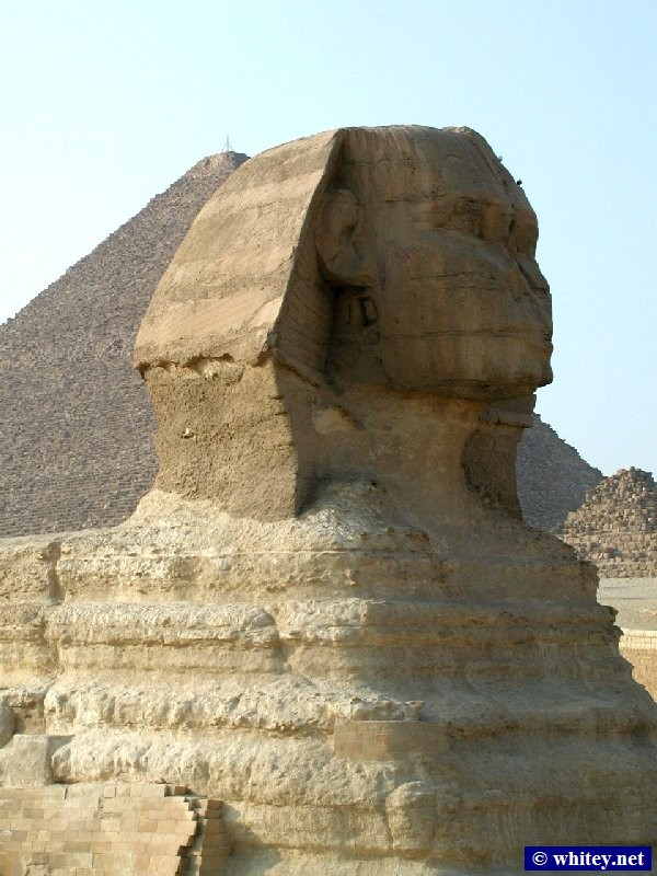 Große Sphinx von Gizeh with the pyramide of Cheops/Khufu in the background, Ägypten.