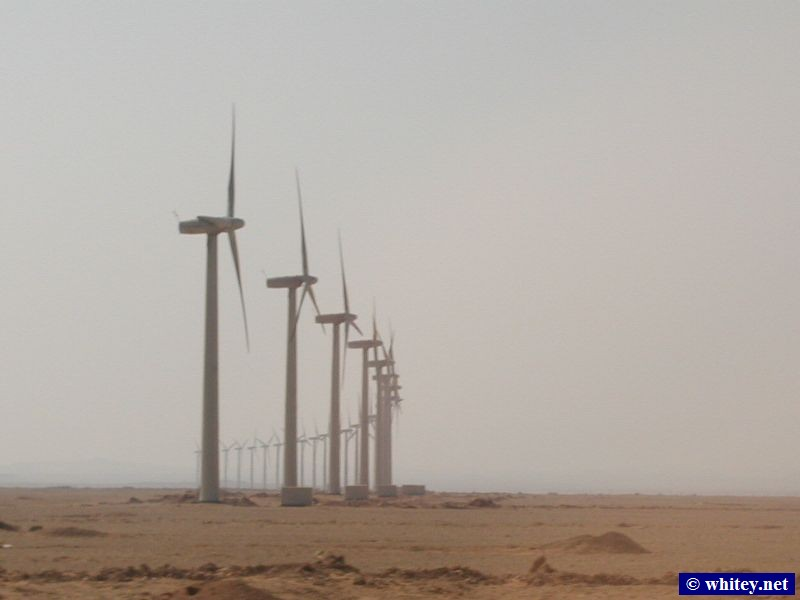 Wind turbines in the Western Desert, on the drive from Cairo to Hurghada, Egypt.