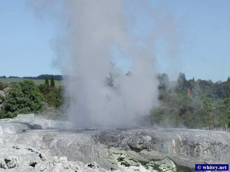 Geysir, Whakarewarewa, Nordinsel, Neuseeland – Compare the water height with the people standing to the right of it.